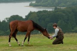 Irish War Horse