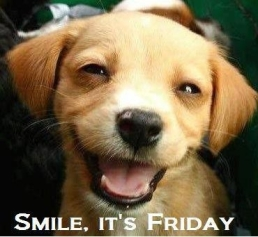 Dog Smile its Friday